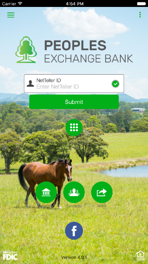 Screenshot iPhone with horse and login